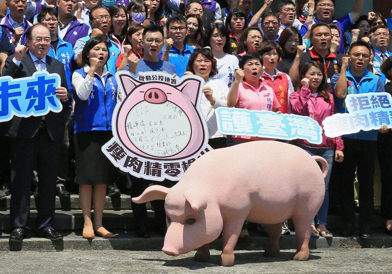 在野黨發起「反萊豬」公投已成案,中選會明將決定是否延期公投。台美TIFA會議昨復談,有學者質疑,若以開放美豬換TIFA復談,台灣到底得到什麼?圖/本報資料照片