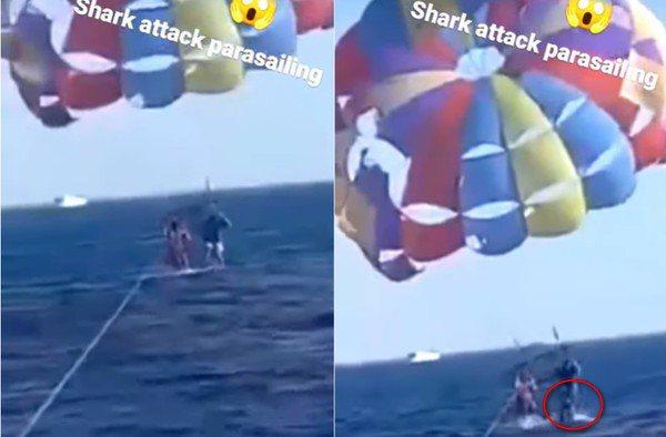 約旦一名37歲男子到紅海玩雙人滑翔傘,豈料一隻鯊魚竟躍出水面「咬了他的腿部一口」,導致男子嚴重受傷被送醫治療,整起過程也被錄下來、引發討論。截自推特