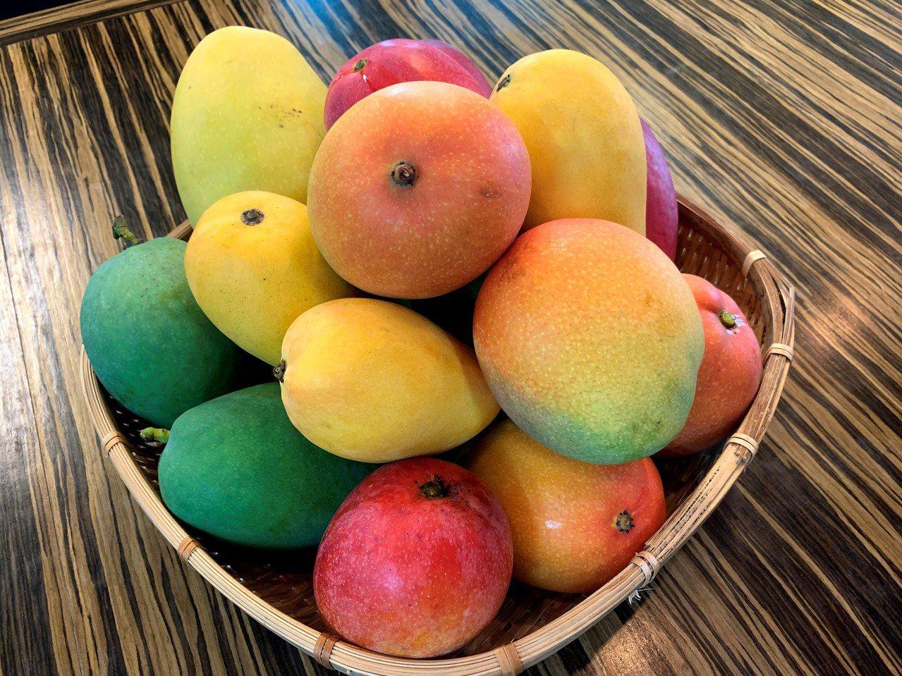 芒果有多種品種供消費者挑選品嘗,唯一的綠皮為黑香。 圖/吳淑玲 攝影