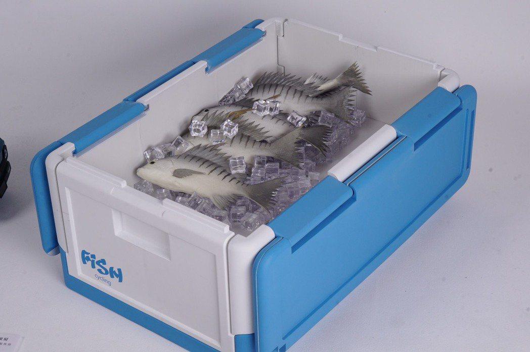 魚樂圈(保麗龍替代計畫)裝載漁獲的使用情境。 東南科大/提供