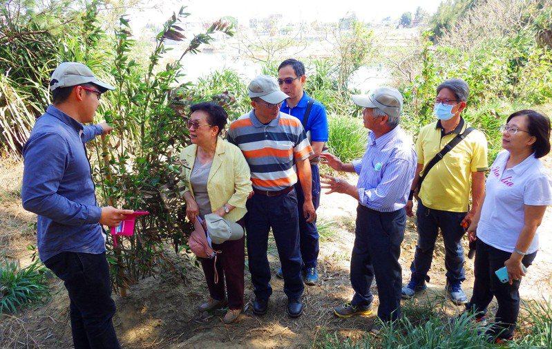 嘉義林管處3月邀請專家學者到試驗地,觀察抗鹽烏腳綠竹生長情形,提供建議。   圖/嘉義林管處提供