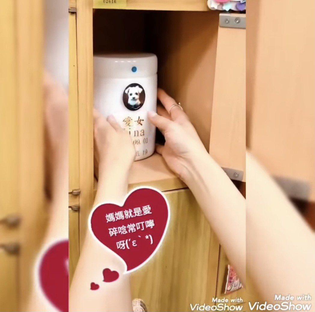 陳珮騏送狗女兒Mina最後一程,道別之際仍不忘叮嚀「回來看媽媽」。圖/摘自臉書