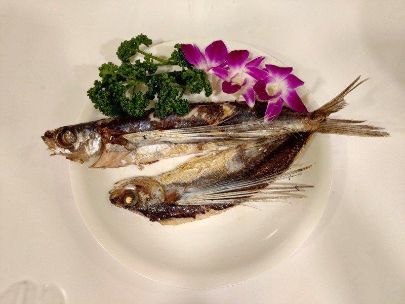 以乾煎方式烹飪飛魚。圖/新北市漁業處提供