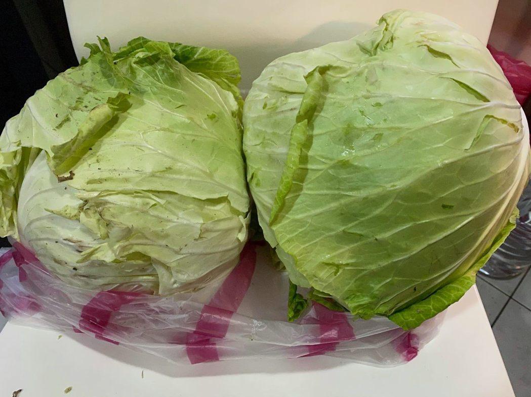 曹西平買2顆高麗菜花了400多元。圖/擷自臉書