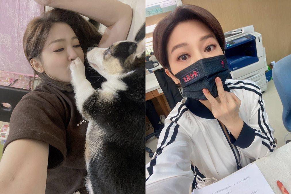 王彩樺被愛犬咬傷。圖/民視提供