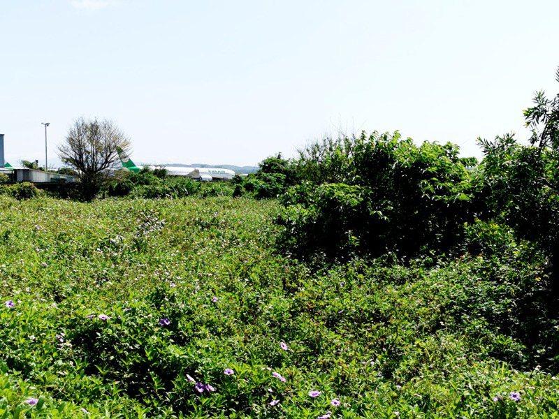 桃園航空城計畫其他搬遷區地上物土地徵審7月7日視訊召開,引起14個民間團隊聯名反對要求停止召開。記者曾增勳/攝影