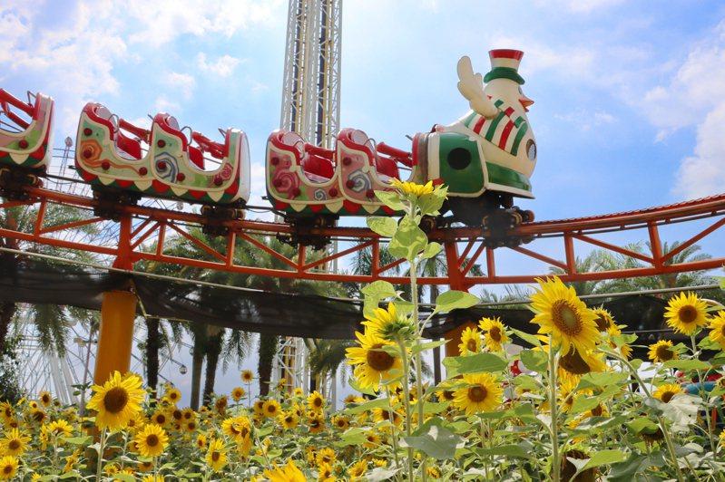 劍湖山世界旗下擁有主題樂園和五星級渡假大飯店,占地60公頃的寬廣場域及13萬棵喬灌木,民眾可以奔向戶外,充分享受陽光綠意芬多精。   圖/劍湖山世界提供