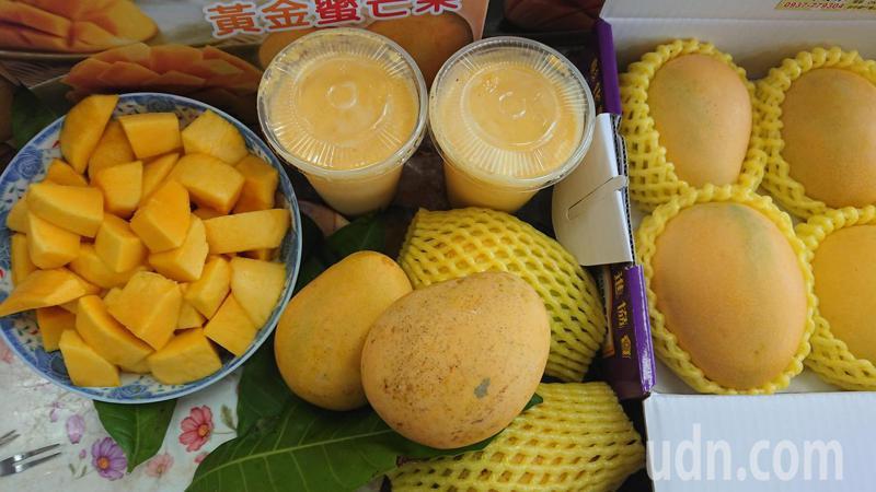 彰化縣埔心鄉「長雀斑」金蜜芒果甜度和頂級芒果一樣,切塊、打果汁都好吃。記者簡慧珍/攝影