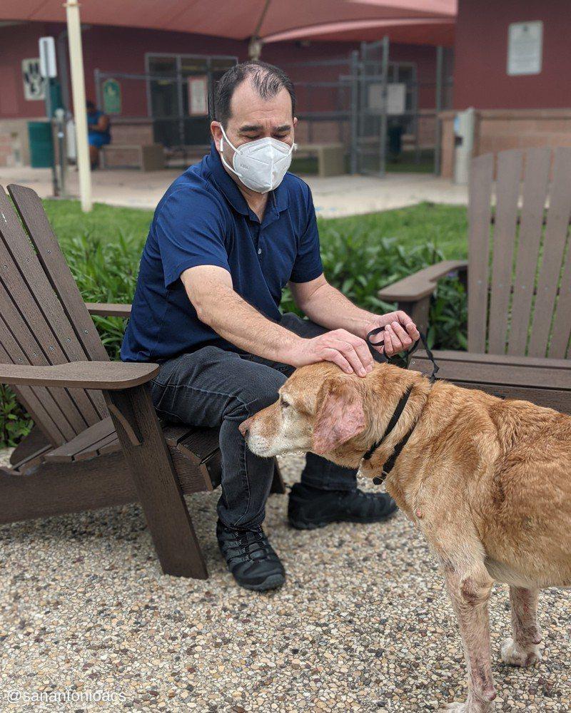 男與失蹤10年的狗在收容所奇蹟重逢。圖/取自facebook@SanAntonioACS