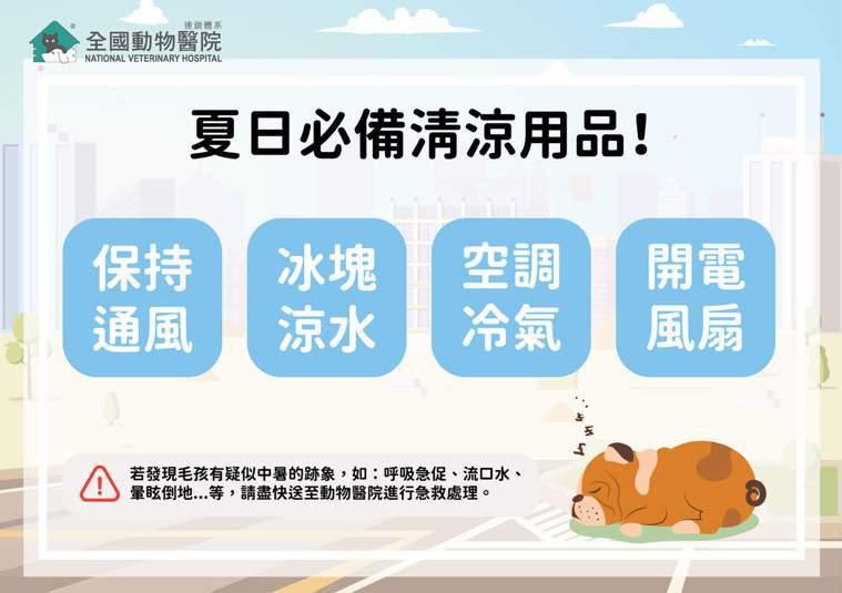 寵物夏日必備清涼用品。圖取自全國動物醫院官網