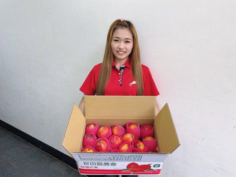 台南芒果小果禮盒熱銷,官田農會加碼推出芒果乾優惠。圖/官田農會提供