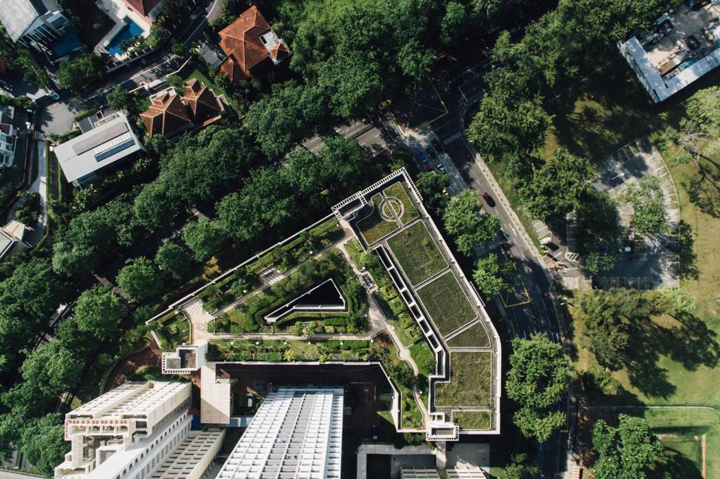 圖為新加坡的屋頂植栽。 圖/unsplash