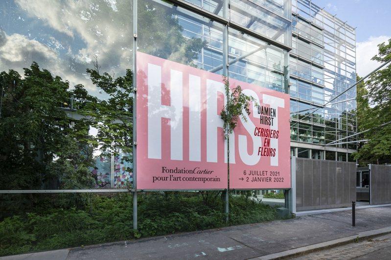 「Cherry Blossoms 櫻花盛放」於巴黎卡地亞當代藝術基金會展出至2022年1月2日止。圖/卡地亞提供