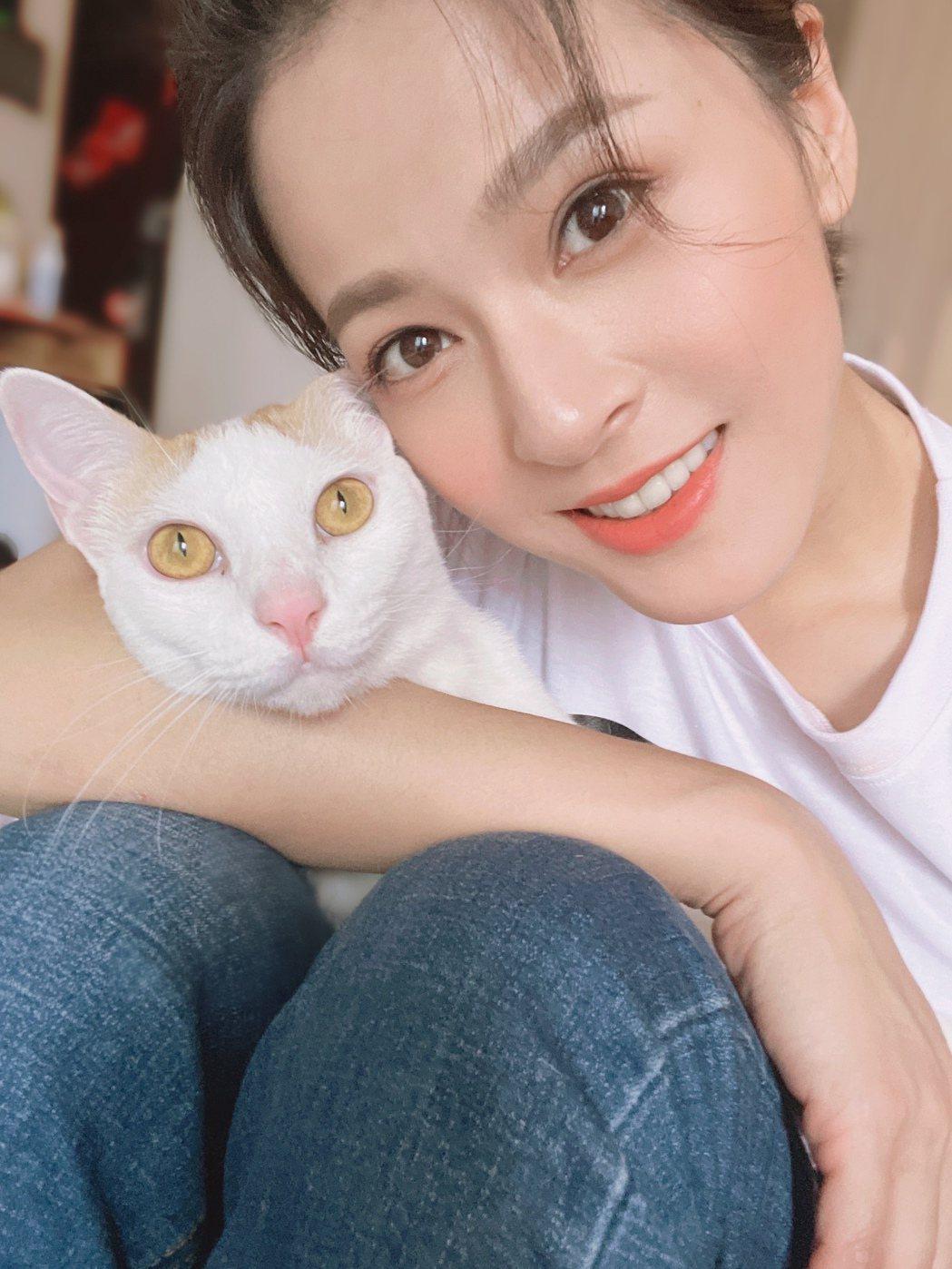 蘇晏霈疫情期間靠吸貓療癒。圖/friDay影音提供