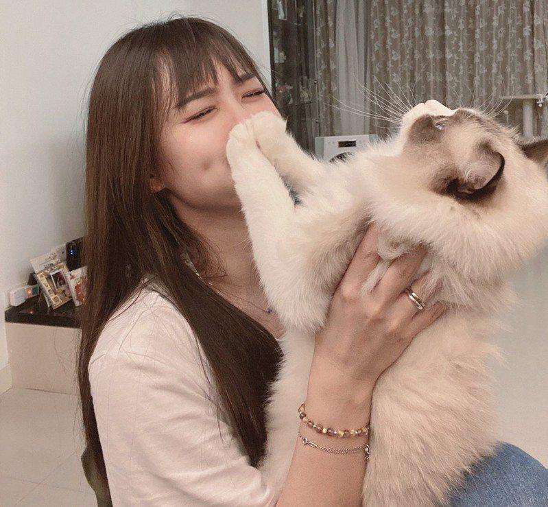 想要吸貓,但貓貓不給吸該怎麼做?照片授權/王緒緒