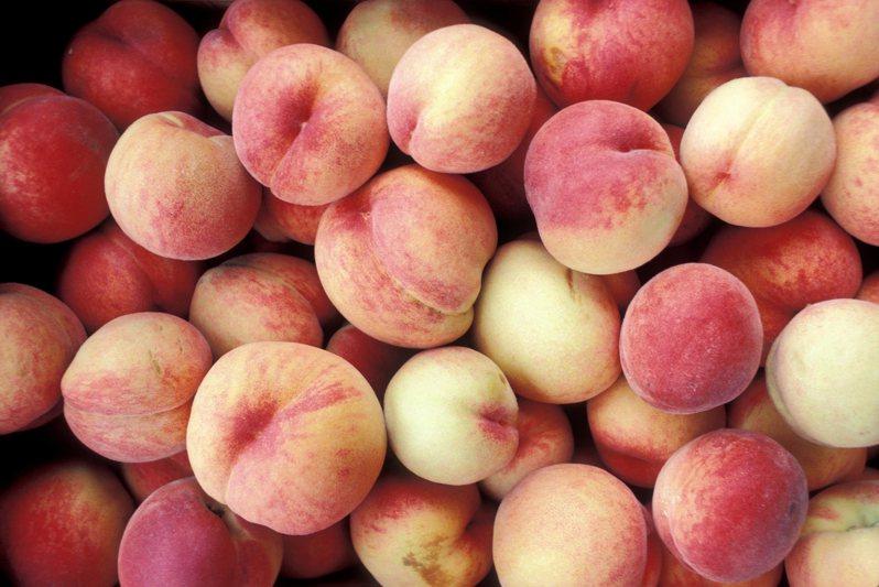 只要切對地方,就能完美不浪費地品嚐水蜜桃。圖片來源/ingimage