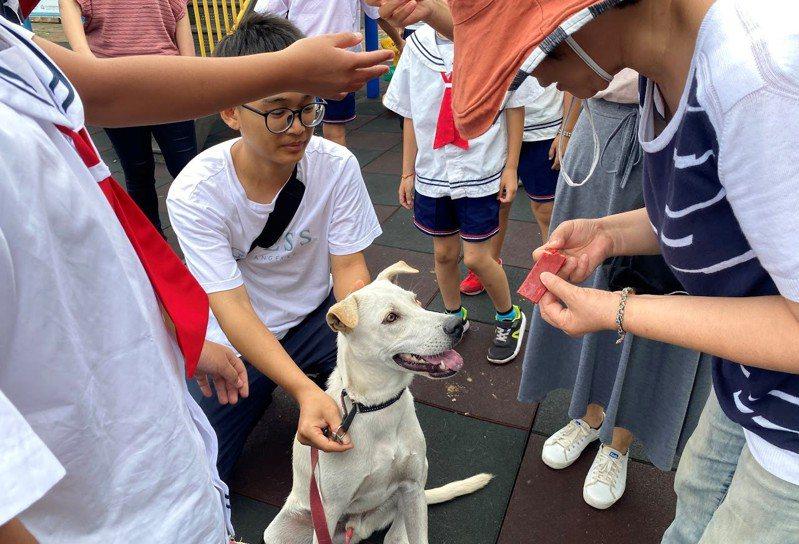 鼻頭國小師生去年9月歡送Aki去上學;圖取自Aki俱樂部粉絲專頁。圖/新北動保處提供