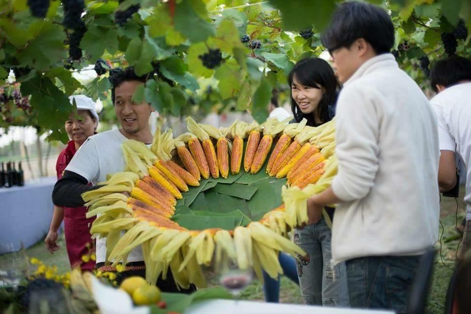「稻田裡的餐桌計畫」活動照片。 圖/幸福果食 提供