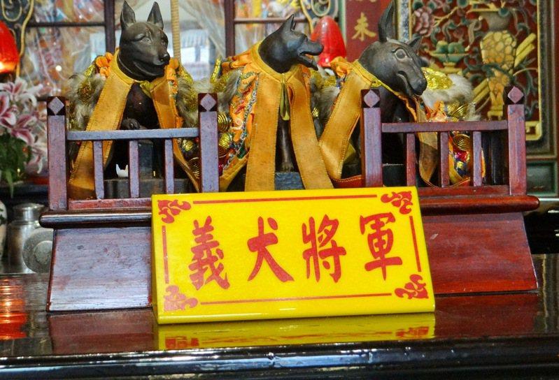列屬國家三級古蹟的北港義民廟,除供奉108名義士,更也供奉保衛鄉里的義犬將軍,相當特殊。記者蔡維斌/攝影
