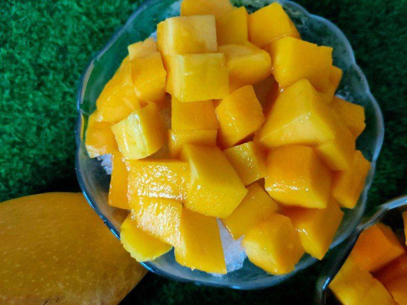 高雄六龜金煌芒果果實碩大、籽薄果肉飽滿多汁,適合製成芒果冰,消暑又好吃。圖/高雄市農業局提供
