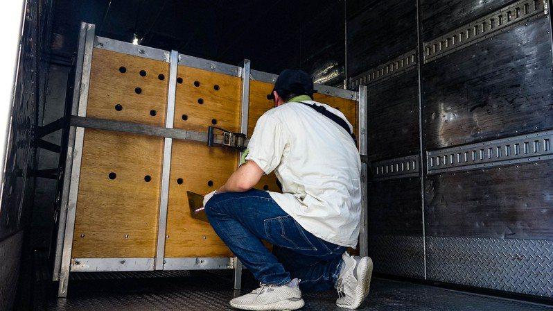 動物進入運輸箱籠後,獸醫師透過孔隙觀察牠們的狀況。圖/北市動物園提供