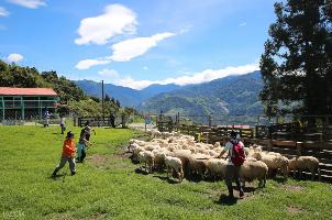 農場與生態園區因為佔地遼闊,也是微解封後出門踏青的熱門選擇。圖/KLOOK提供