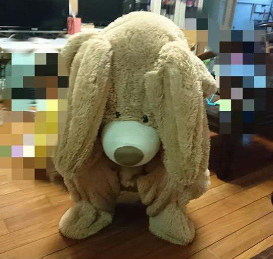 近日一名網友發文分享好市多熱賣的巨大熊玩偶的清洗秘訣以及創意玩法,貼文引起大量網友關注,也釣出許多內行人分享自家秘方。圖/取自Costco好市多 商品經驗老實說