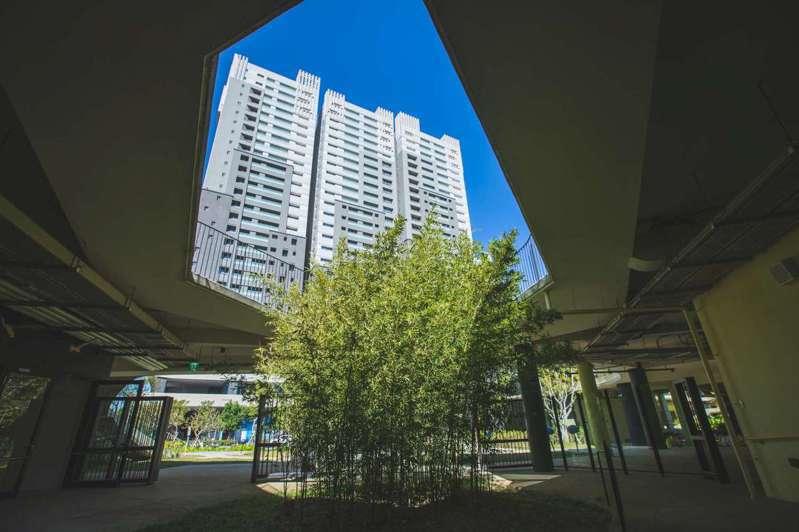 關埔國小則以小樹林取代校園圍牆,更有天井桂竹林美景。圖/新竹市政府提供