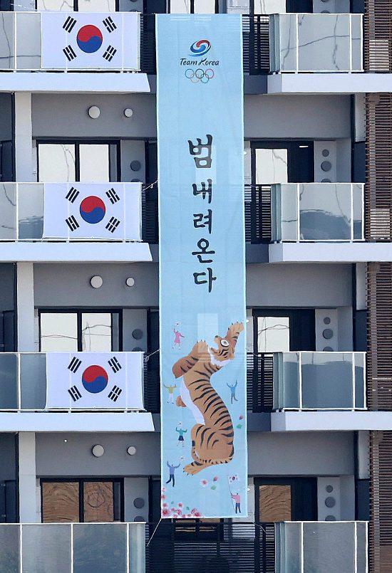 韓國才剛撤下抗日名將的標語,卻又在新布條上做出敏感的政治宣示,引發日本網友的不滿。圖擷取自WOW!Koera