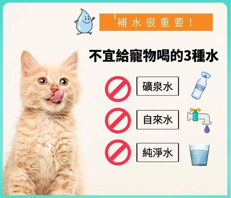 不宜給寵物喝的三種水。聯合新聞網製表