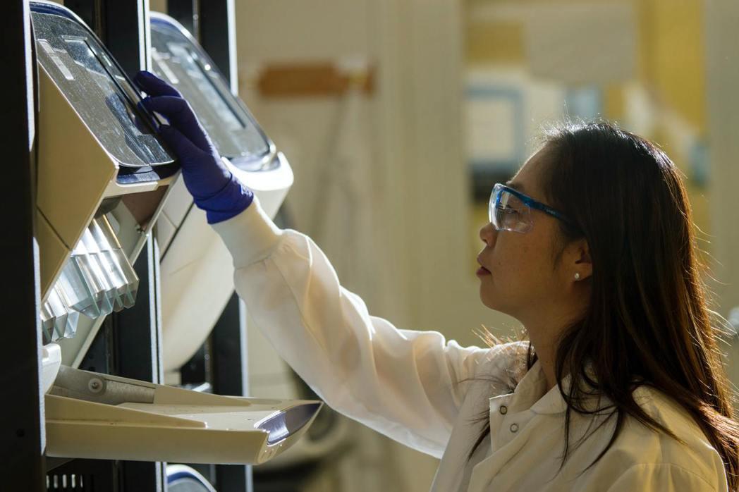近年來,國內大學理工科系的女性比例並沒有顯著上升。 圖/unsplash