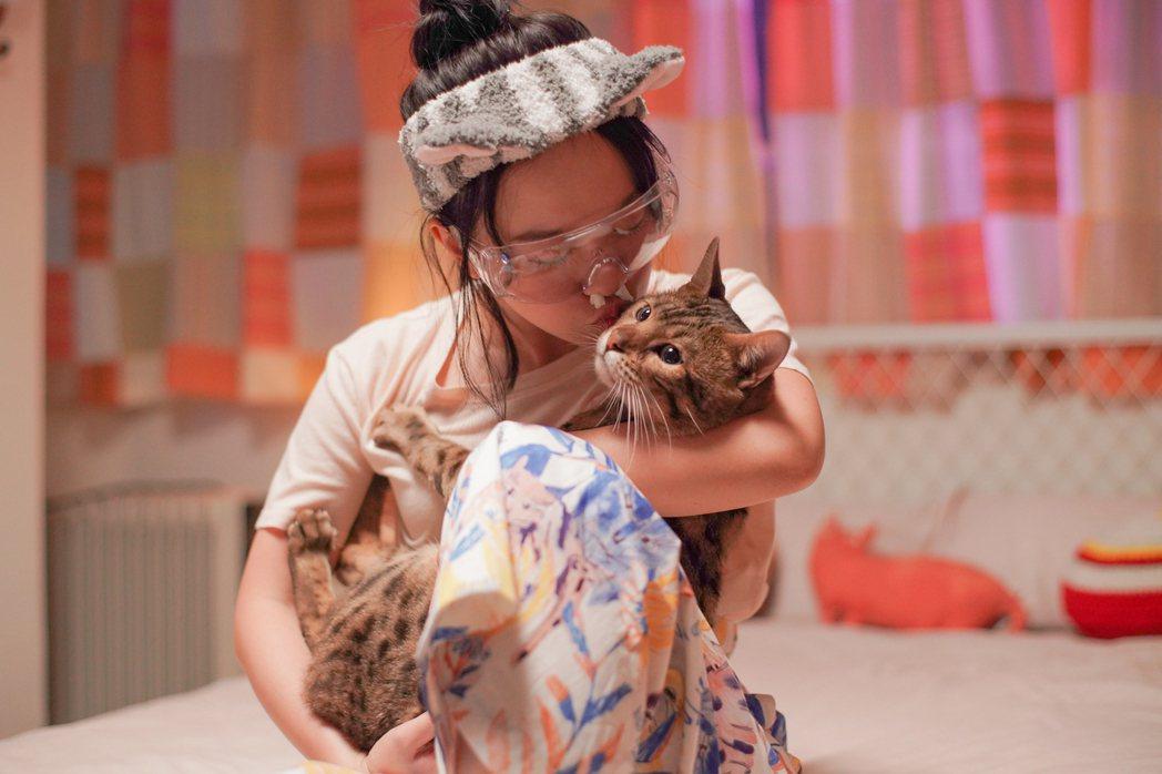 「我的老闆是隻貓」嚴正嵐與貓咪親密互動,但戲裡戲外都對貓毛嚴重過敏。圖/myVi...