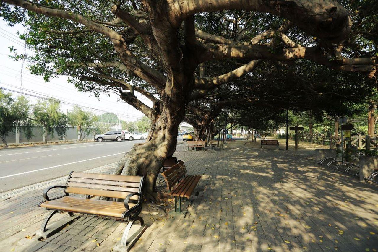 六寶公園原是荒廢的鐵路運輸道路,改造變身成為美麗公園,遊客騎車累了,可停下來歇息...