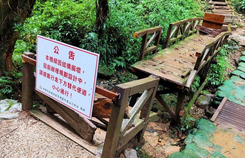 嘉義林管處表示,特富野古道步道內結構損毀的木造橋樑已暫時封閉。圖/嘉義林管處提供