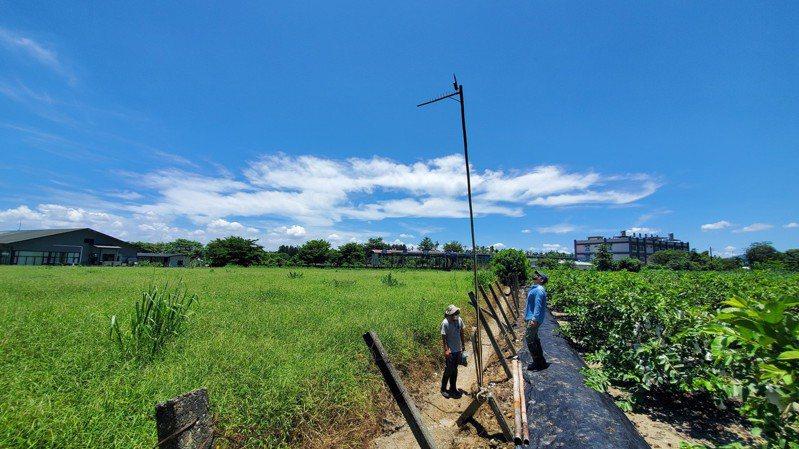 遠雄人壽與屏科大於屏東善導書院鳳梨田間佈建6米高雙層棲架及生態監測相機,協助環保復育/遠雄人壽提供。