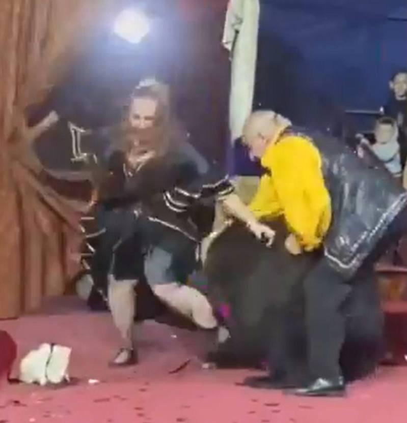 黑熊突然失控,撲向女馴獸師,還不斷拉扯她的腿,又咬其黑色及膝裙。(影片截圖)