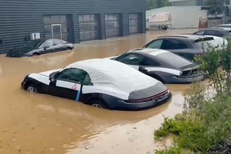 影/一群蛙掉下水 德國大洪水襲擊保時捷經銷商