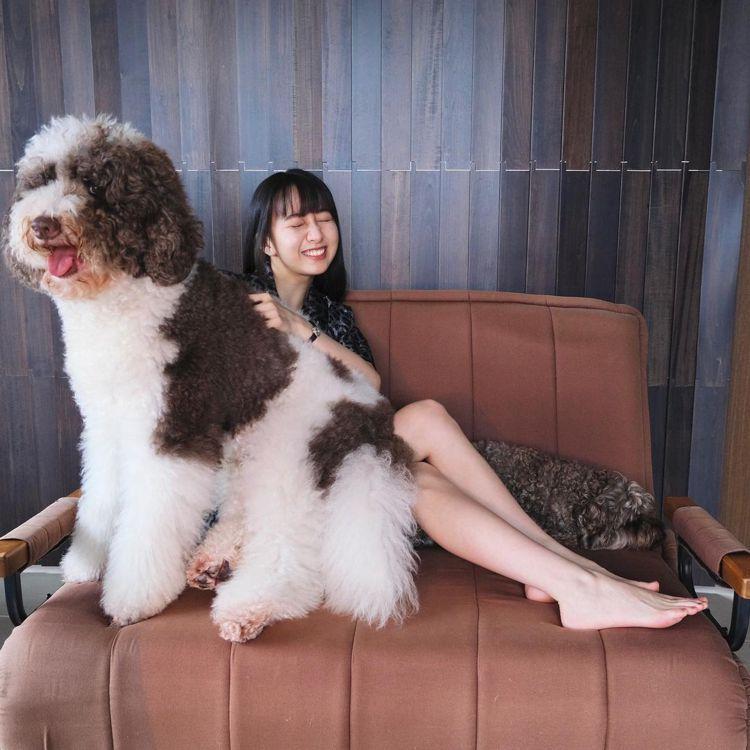 木村心美身穿DIOR Mizza系列野性豹紋家居系列,和家中的英國古代牧羊犬Hi...