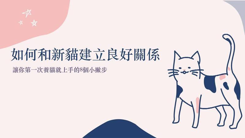 如何和新貓建立良好關係?圖取自興旺動物醫院臉書