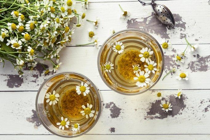 像是蒲公英、歐蓍草、啤酒花、洋甘菊、艾菊、聖薊及乳薊也都是苦味藥草,有助促進食慾...