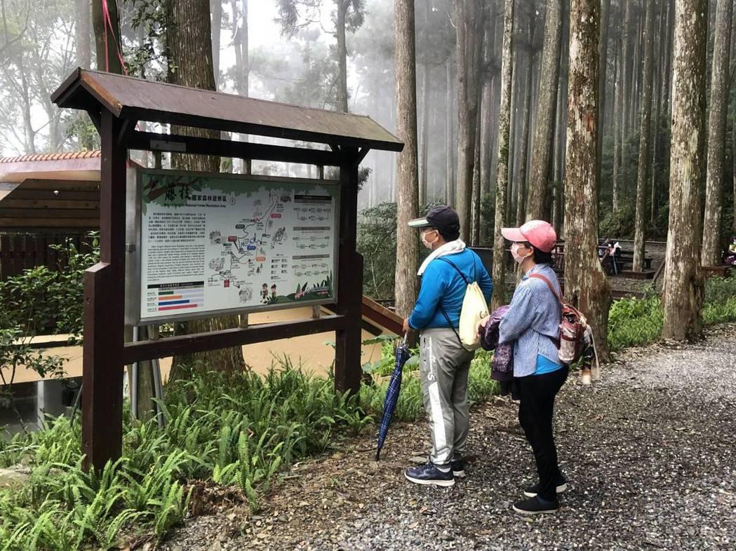 7月13日「微解封」後,各地國家森林遊樂區開始出現人潮。圖/林務局提供