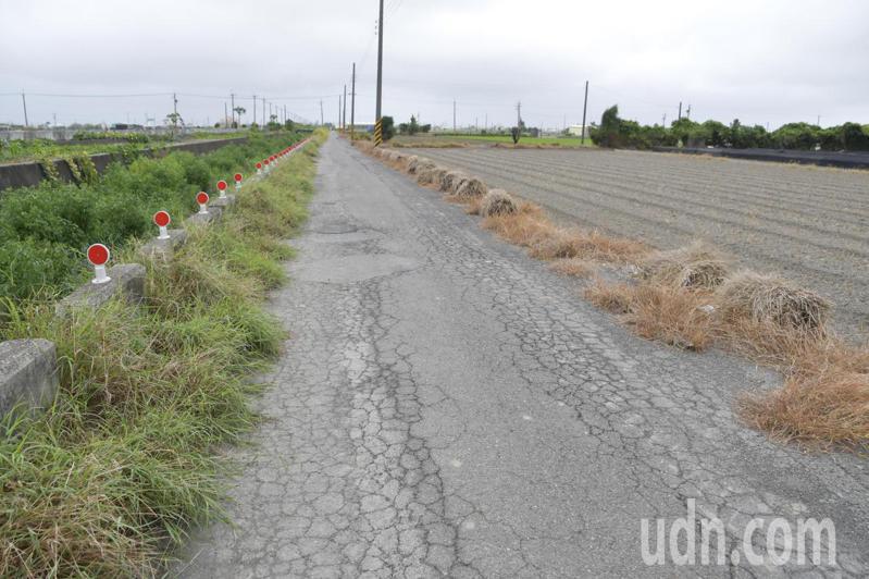彰化縣二林鎮農路完工半世紀,路面龜裂,道路品質嚴重不良。記者簡慧珍/攝影