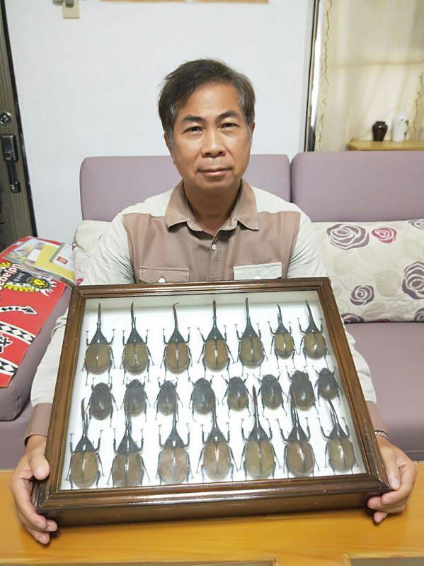 韋立琦酷愛昆蟲,40多年來從未改變,家中收藏大批昆蟲,以甲蟲最多,還在台東大學長...
