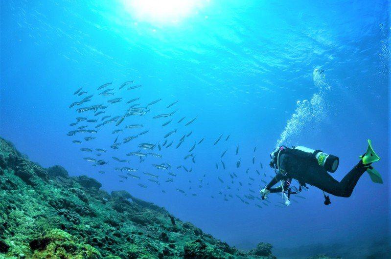 屏東墾丁是水上活動勝地,得知「水域仍不開放,但有開放潛水」、「水域活動不要群聚肢體頻繁接觸就會開放」原則時,業者有「如釋重負」的雀躍心情。記者潘欣中/翻攝