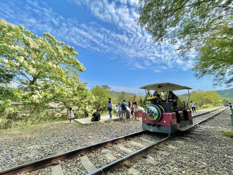 苗栗縣著名的舊山線鐵道自行車已於7月23日起配合三級警戒微解封階段復駛。圖/苗栗縣政府提供