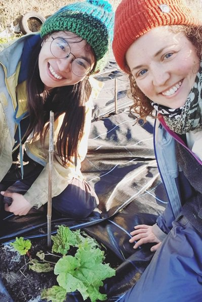 到農場打工換宿不僅可以體驗農村生活,更能結交來自各地的朋友。(照片提供/游婉琪)