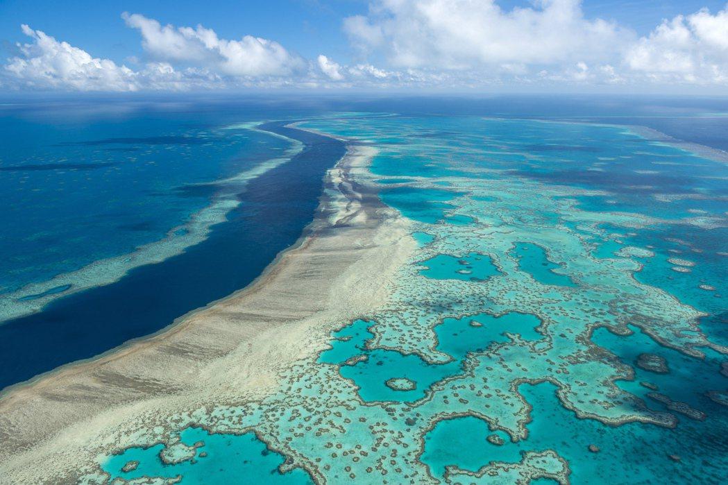 世界遺產委員會23日開會決定,暫時不將大堡礁列為「瀕危世界遺產」。美聯社
