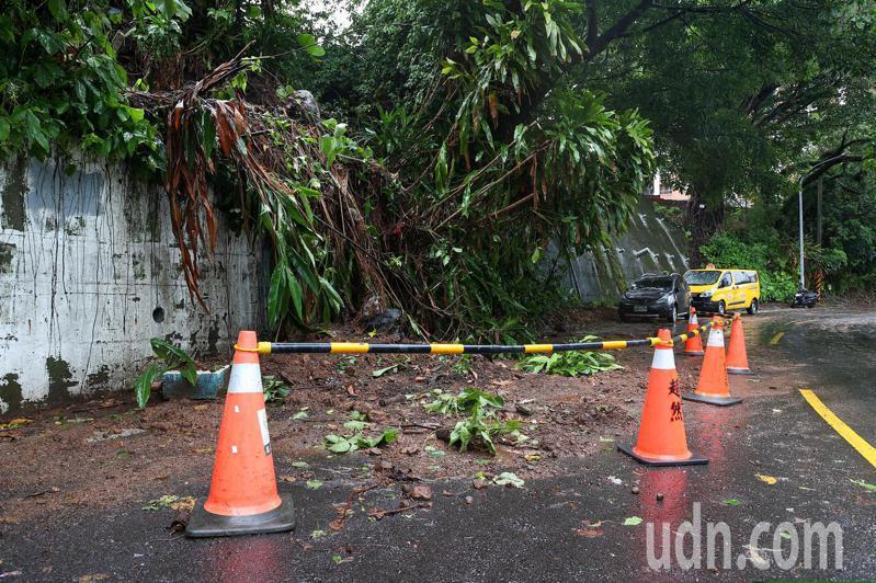 中颱烟花過境,大雨導致北投區土石崩落導致路樹倒塌,造成附近地區停電。記者季相儒/攝影