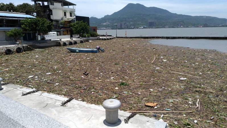 烟花颱風帶來大量雨勢,警報解除後在淡水第一漁港明顯可見大量垃圾堆積在港內,幾乎大半面積都被垃圾給覆蓋。圖/鄭宇恩提供