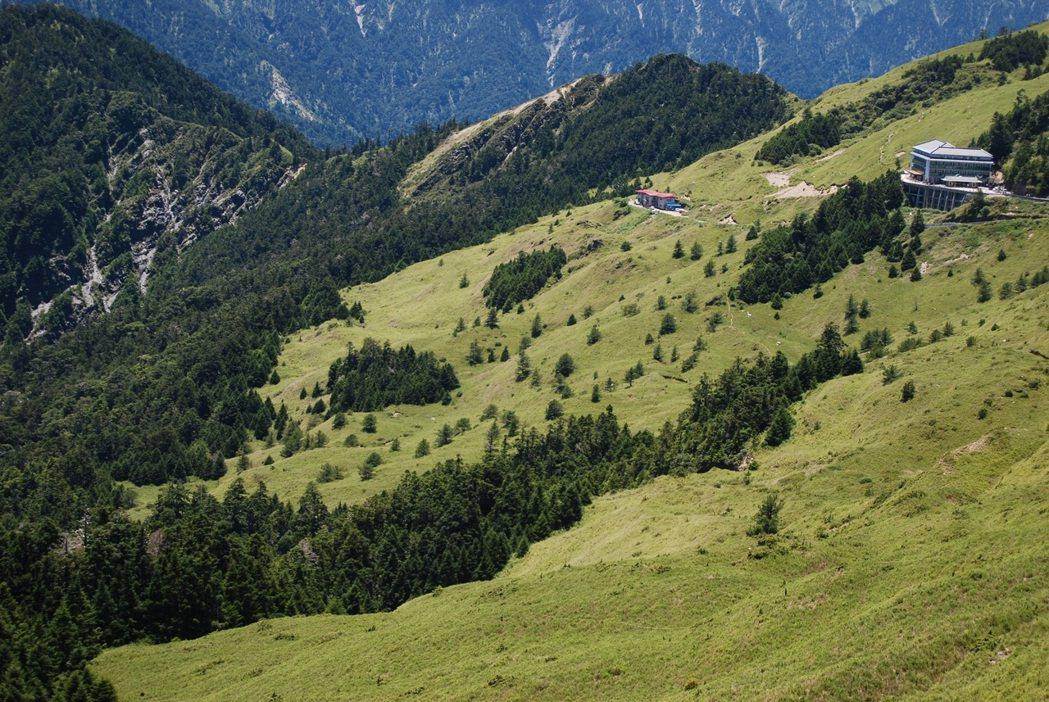 圖為合歡山。 圖/東勢林管處